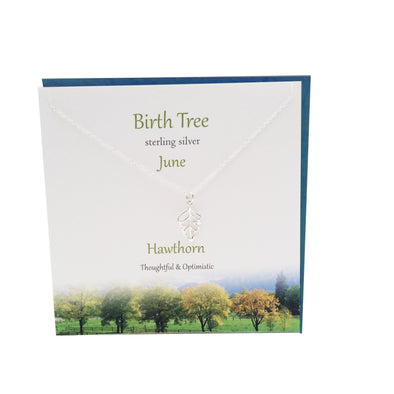 June Birth Tree Hawthorn silver necklace | The Silver Studio Scotland