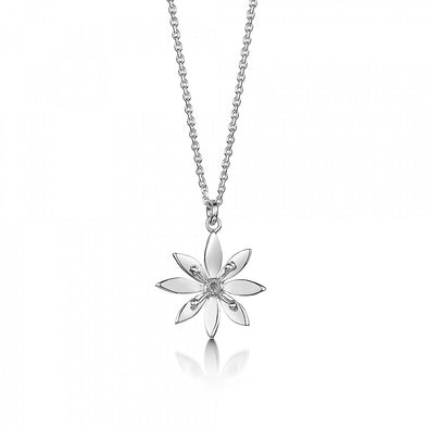 Allium Silver Pendant medium | Glenna Jewellery Scotland