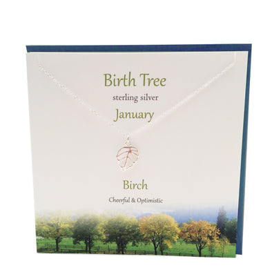 January Birth Tree Birch silver necklace | The Silver Studio Scotland