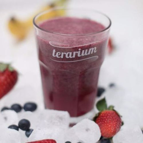 terarium.ro TERARIUM SMOOTHIES BLUEBERRY ENERGY 125GR