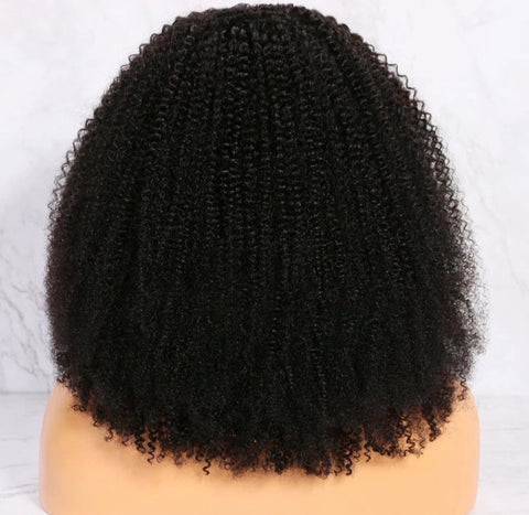 Mongolian Kinky Curly 13*4 Lace Front Wig - Exclusive Hair