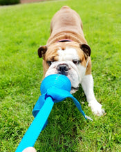 Load image into Gallery viewer, KONG Wubba Comet Dog Toy