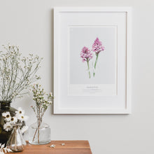 Load image into Gallery viewer, PYRAMIDAL ORCHID PRINT