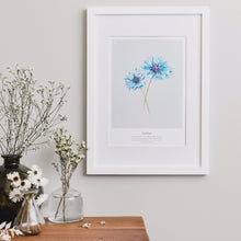 Load image into Gallery viewer, CORNFLOWER PRINT