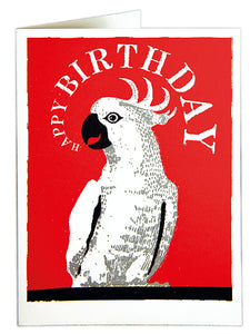 Parrot - Happy Birthday