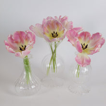 Load image into Gallery viewer, New Evie Bud Vases - Set of 3