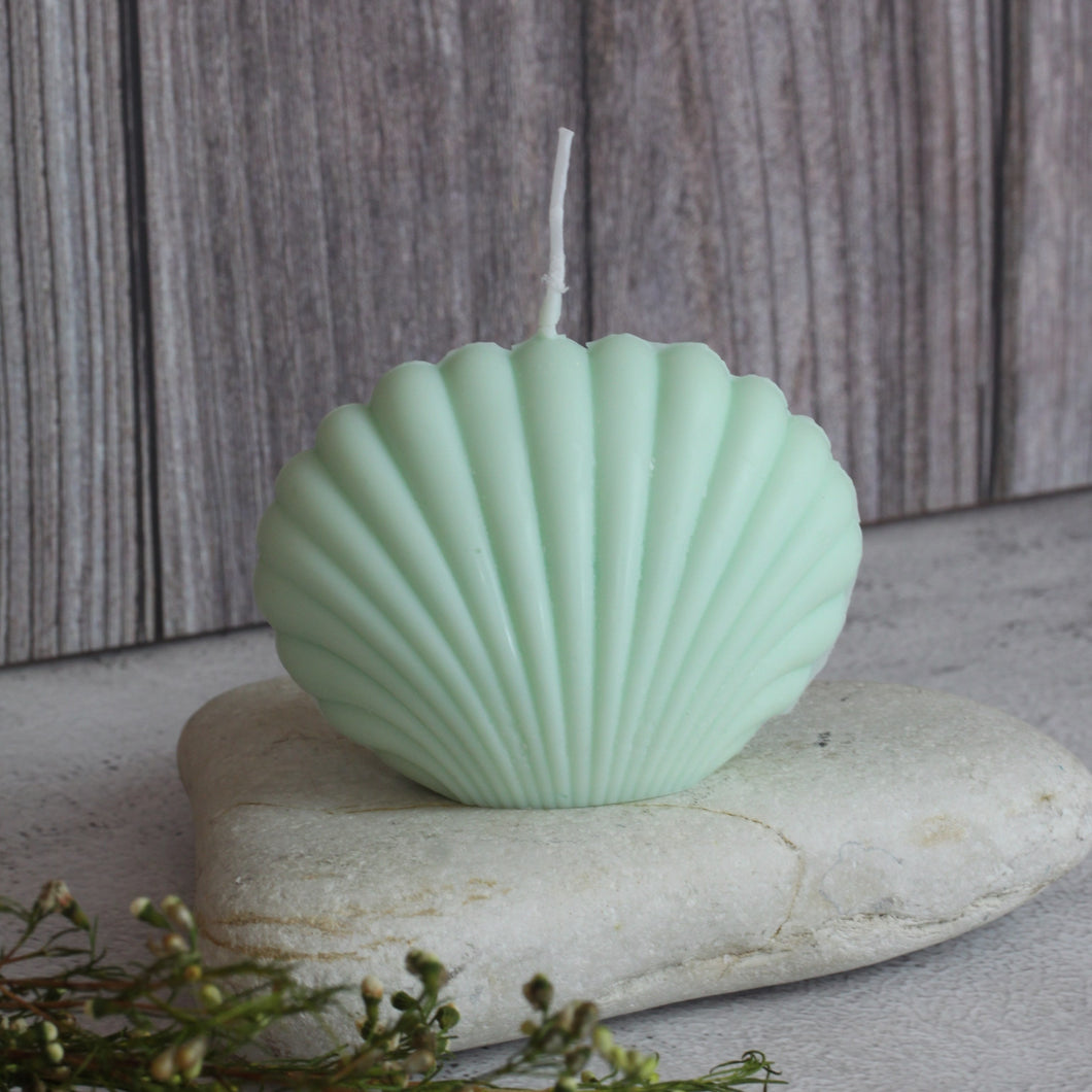 Scallop  Shell Candle - Pistachio
