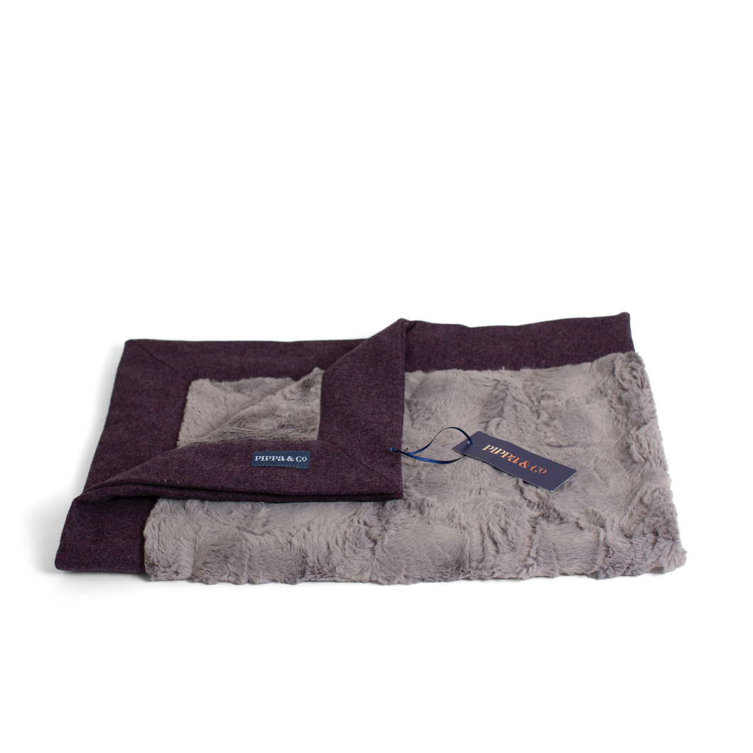 Luxury Dog Blanket - Grape