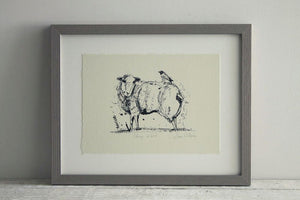 Sheep and Bird Framed Print