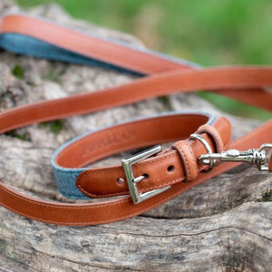 Leather Dog Collar - Aqua