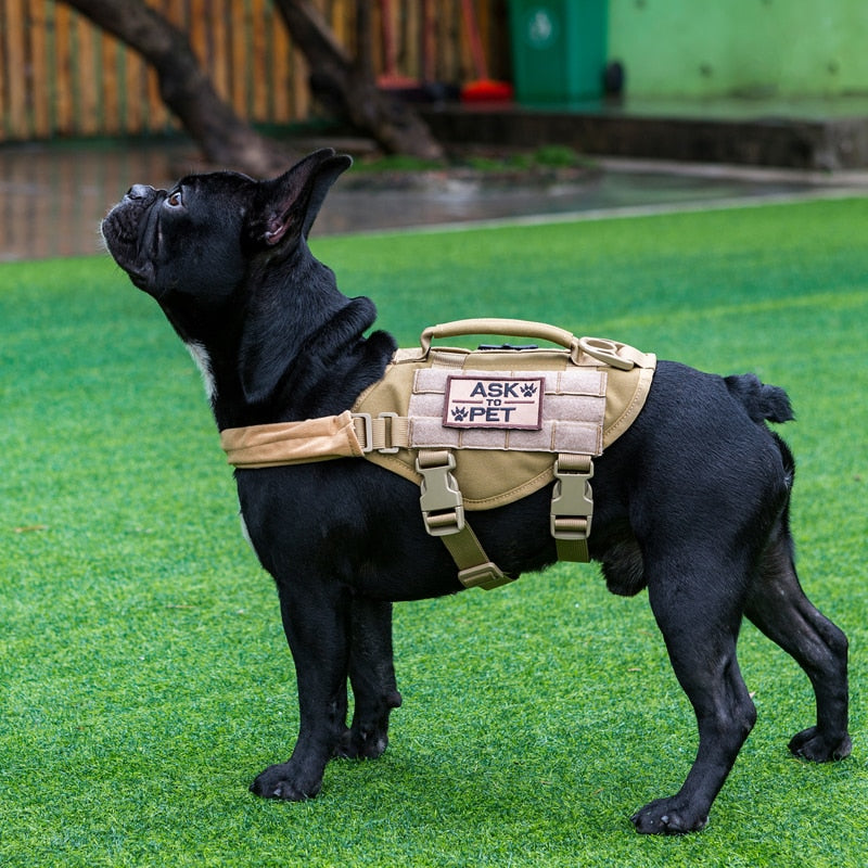 Small Dog K9 Tactical Vest