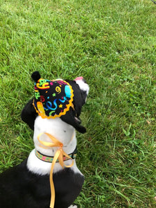 Black/ Yellow Pawty Hat