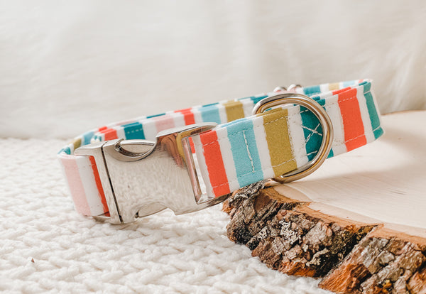 holiday dog collar in candy cane print