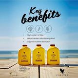 Forever Living Fit 15 Beiginner - Chocolate with Fiber