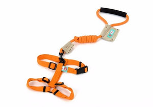 Exclusive Custom Collar Suit Traction And Set-Shaped Harness Leash Out Traction Essential Nylon Products Collar 3Colors-home-betahavit-yellow 691-L-betahavit