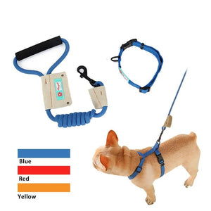 Exclusive Custom Collar Suit Traction And Set-Shaped Harness Leash Out Traction Essential Nylon Products Collar 3Colors-home-betahavit-betahavit