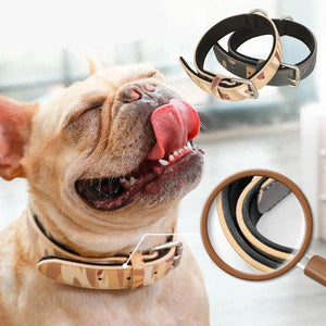 Dog Collars Leather Dog Adjustable Collar For Small Medium Large Dogs Pet Supplies-home-betahavit-betahavit