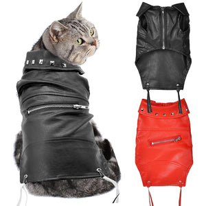 Leather Cat Jacket Autumn Winter Pet Clothing Dogs Cat Clothes Costumes Dog Jacket Coat Puppy Outfits for Chihuahua Yorkshire-home-betahavit-betahavit