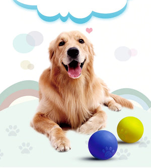 Pet Dog Toys Toy Funny Interactive Ball Dog Chew Toy For Dog Tooth Clean Balls Pet Supplies-home-betahavit-betahavit