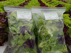 Mean Greens Lettuce 150g