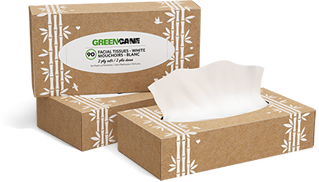 Green Cane Facial Tissues 90 sheets per box
