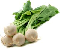 White Turnips- Organic