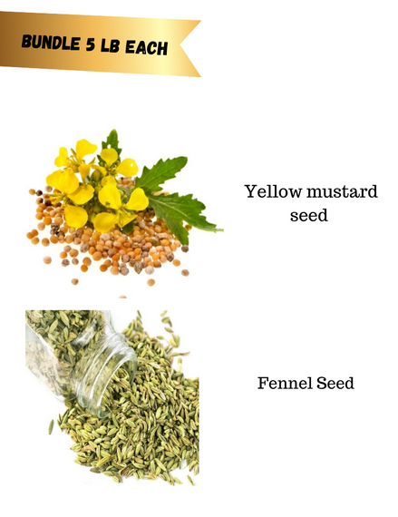 Spice Seed Bundle 13