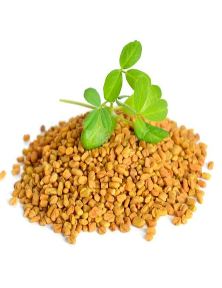 Organic Fenugreek Seeds Whole
