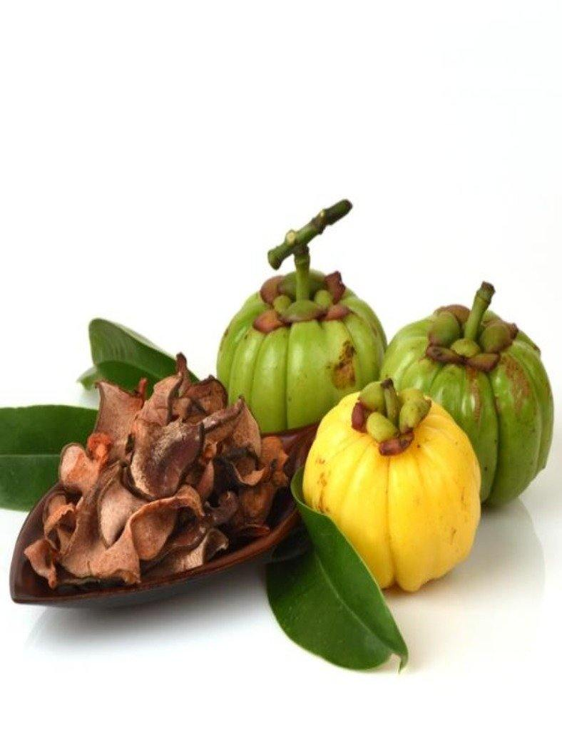 Garcinia Cambogia Extract Powder 10 1 Naturevibebotanicals