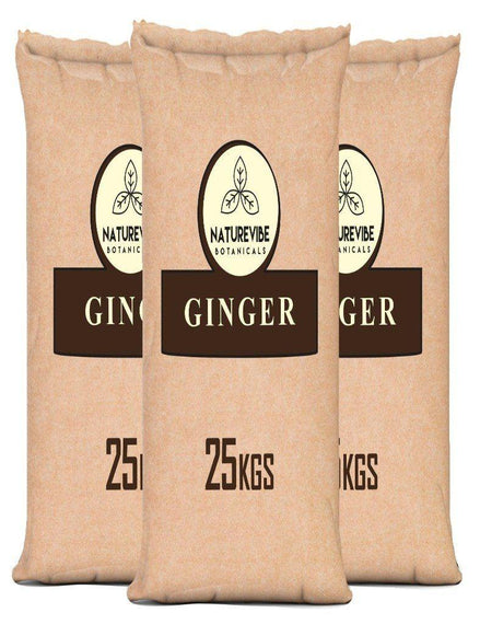 Ginger Root Powder (Bulk Bag)