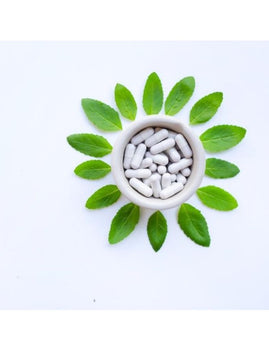 Holy Basil Powder Capsules- BULK