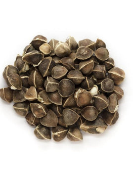 Moringa Seeds Dried