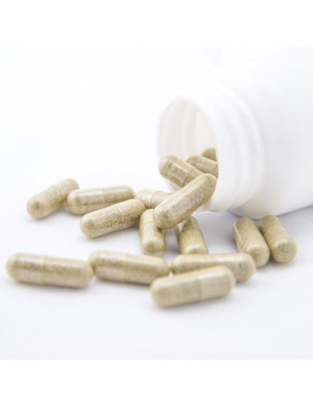 Neem Leaf Powder Capsules- BULK