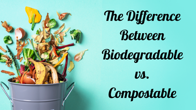 What is The Difference Between Biodegradable vs. Compostable Products?