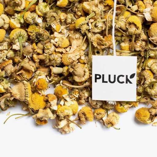 Loose leaf Chamomile herbal tea with Pluck tea bag tag