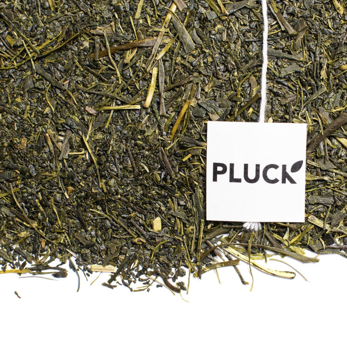 Loose leaf Fukamishi Sencha green tea with Pluck tea bag tag