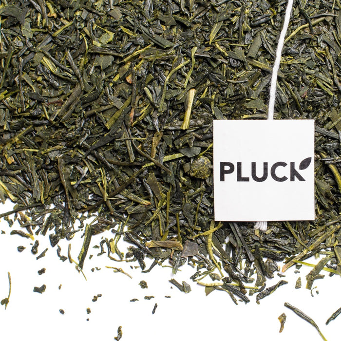 Loose leaf First Flush Sencha green tea with Pluck tea bag tag