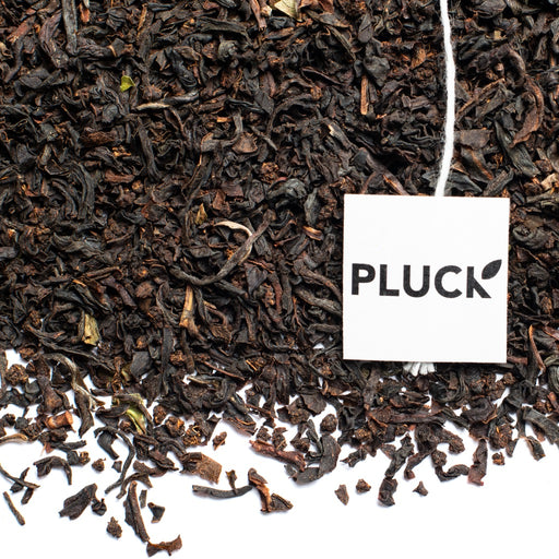 loose leaf orange pekoe organic black tea with Pluck tea tag