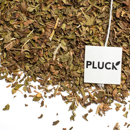 Loose leaf Harvest Mint organic herbal tea with Pluck tea bag tag