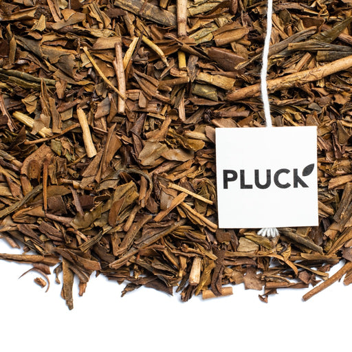 Loose leaf Houjicha organic green Tea with Pluck tea bag tag