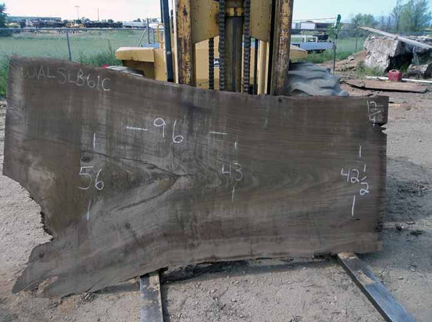 Walnut Slab WALSLB61C