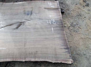 Walnut Slab WALSLB61F