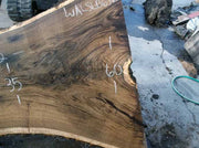 Walnut Slab WALSLB63D