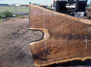 Walnut Slab WALSLB64H
