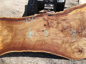 Cottonwood Slab COTSLB4F