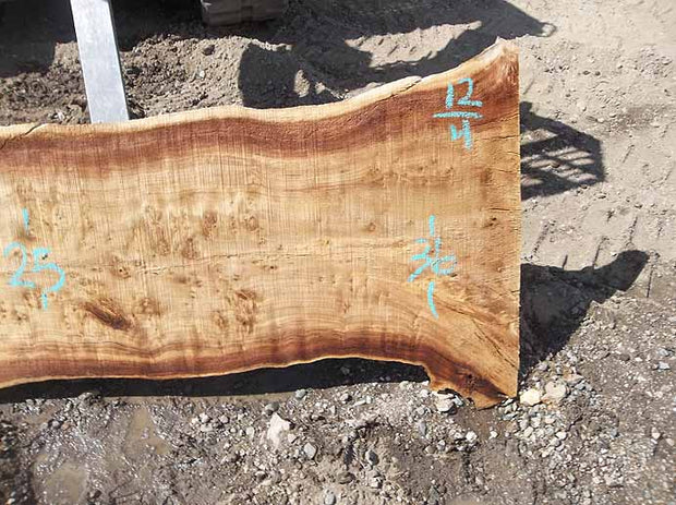 Cottonwood Slab COTSLB5D