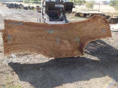 Cottonwood Slab COTSLB7A