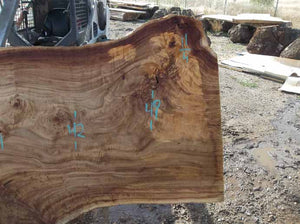 Cottonwood Slab COTSLB7D