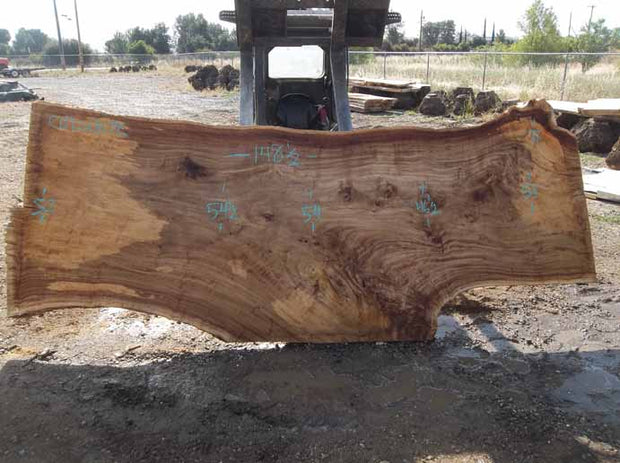 Cottonwood Slab COTSLB7E