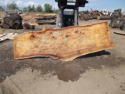Cottonwood Slab COTSLB7I